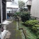 befor : 隣地からの視線が気になる庭