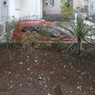 before : フェンス周りの既存樹。背丈がないので、生垣の役目にもなっていない