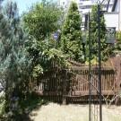 before:庭から見た門まわり