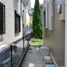 before:玄関脇からの庭