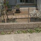 before:隣地駐車場側からの庭