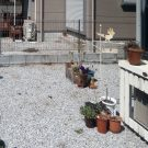 before:庭からリビング側方向