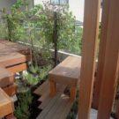 建物側から見た庭