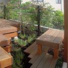 建物から見た庭