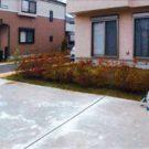 before:駐車場から庭を見る