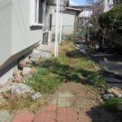 before:玄関前から庭を見る