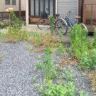 before:玄関前