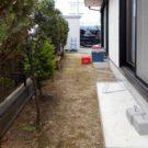 before:庭の奥から駐車場方向を見る