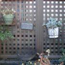 庭のコーナーに設けたフェンス
