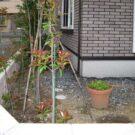 before:敷地コーナーから見た庭