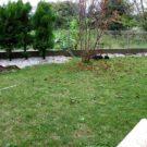 before:建物側から見た庭